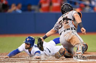 Canada Tigers Blue Jays Baseball
