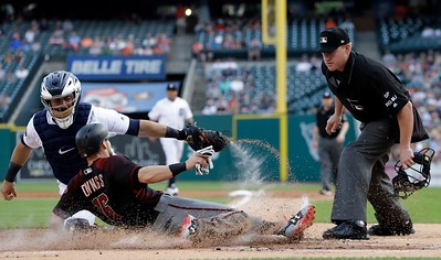 Diamondbacks Tigers Baseball