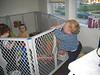 Luna und Hailey in Tims Käfig