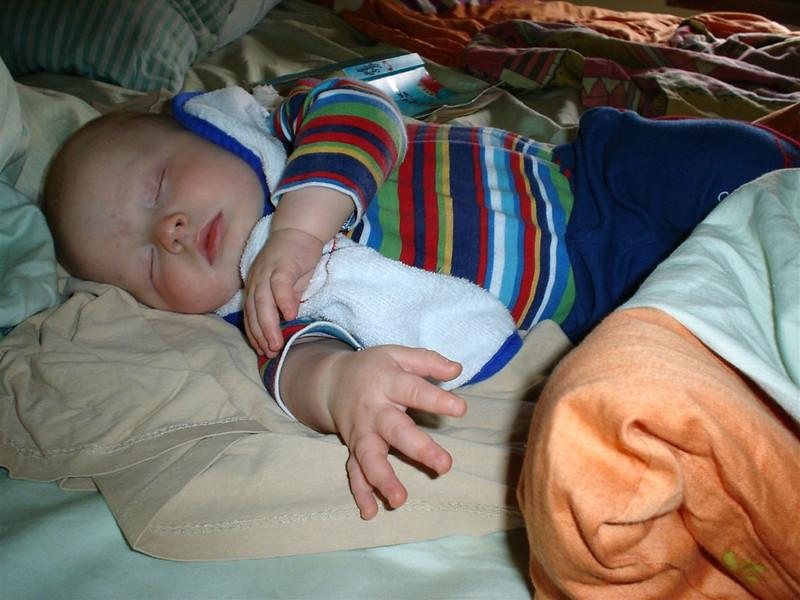 Schlafendes Purzel