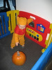 Pumpkin in Playpen