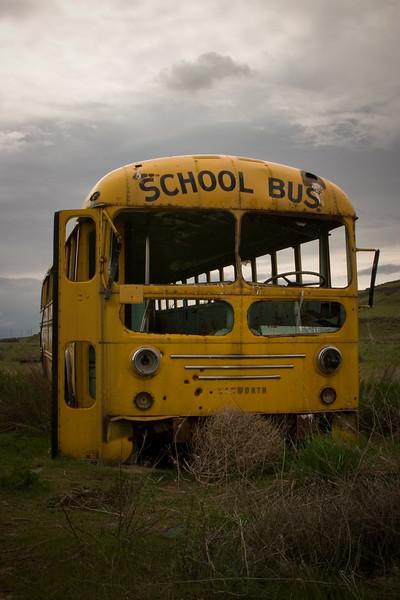 School Bus near Washtucna, WA
