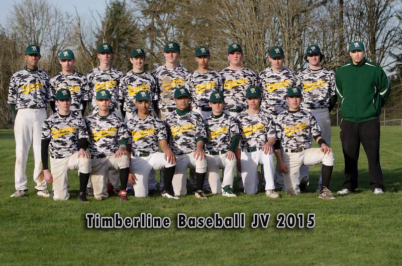 2015 Timberline Baseball