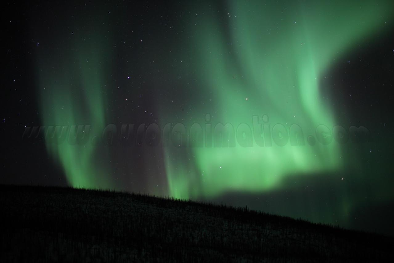 Auroras over the White Mountains