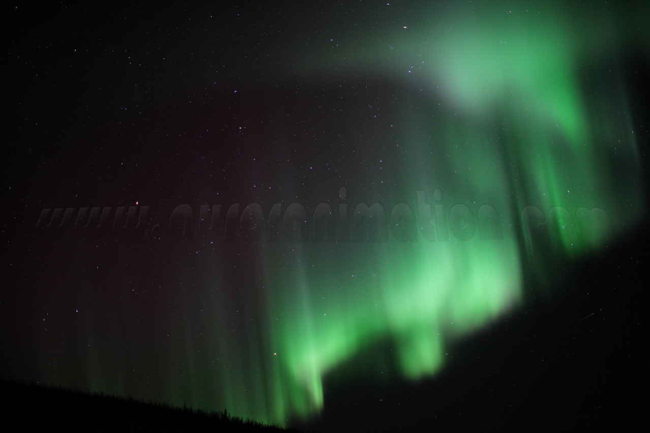 Northern Borealis on March 7 2013