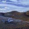 Rustic Desert Landscape Time Lapse