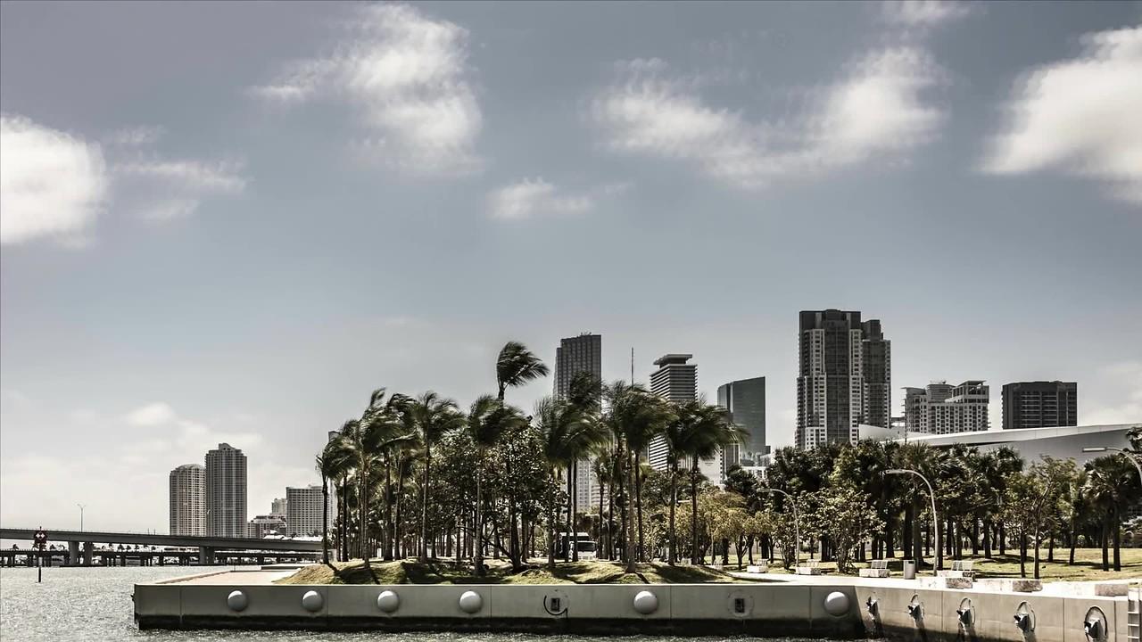 Miami Scenes March 2018