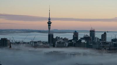 Auckland City Fog