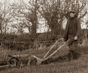 Man with horse plough