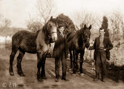 Two Men & Horses