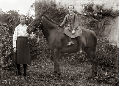 Horse and two girls