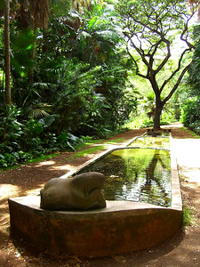 Stepped Fountain Allerton Gardens, Kauai