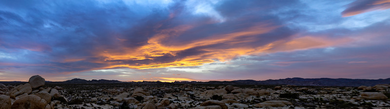 Joshua Tree Sunset Panoramic