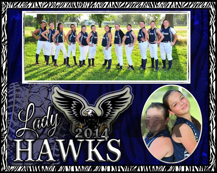 remedies memory Mate Lady Hawks 2014