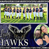remedies memory Mate Lady Hawks 2014