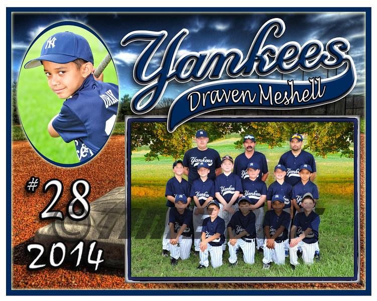 Draven Meshell Yankees memory mate 2014