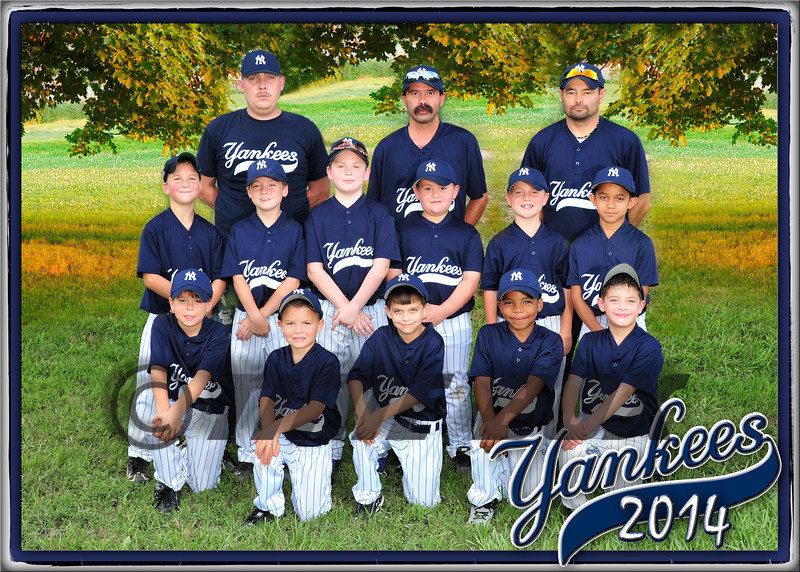 Yankees team photo 2014
