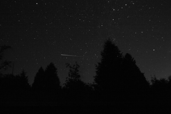 A Perseid meteor shower caught on 'film'.  This exposure is approximately 40 seconds and was taken on August 13th at 11:30pm in the Pacific Northwest.