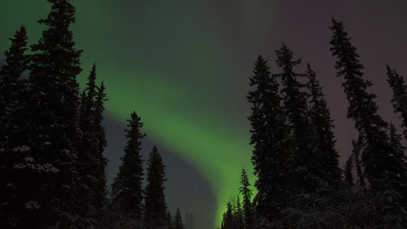 Aurora Borealis compilation from February 18-19, 2014