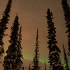 Northern Lights February 19, 2014