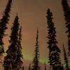 Northern Lights February 19, 2014