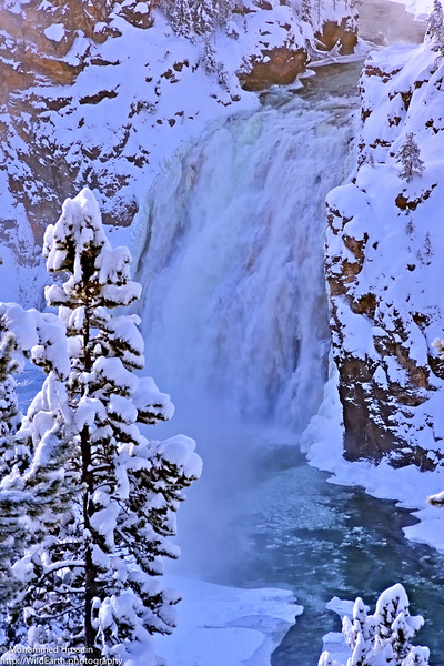 Frozen Upper Falls - Yellowstone National Park, WY