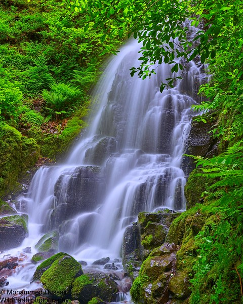 Fairy Falls, Columbia River Gorge, OR