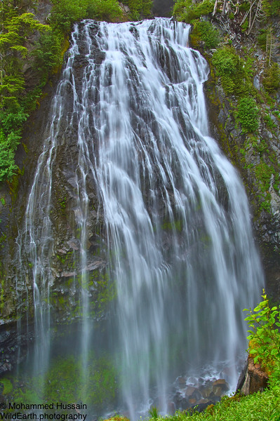 Narada Falls, Mount Rainier National Park, WA