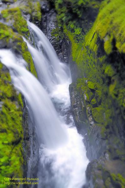 Sol Duc Falls ~ Olympic National Park, WA