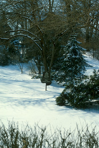 Snow covered grounds of Comely Bank, home of Paul and Jean Harris in Chicago, Illinois, USA. 1982.