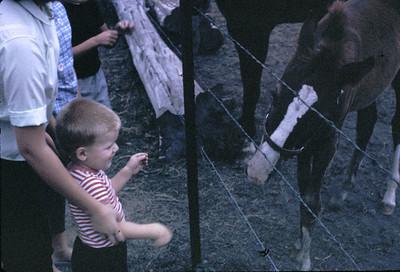 19630601_linda_john_feeding
