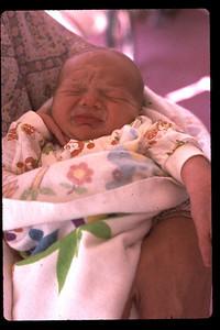 baby joey 7