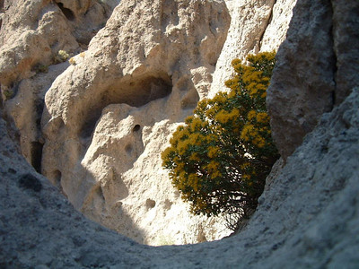 Hole in the Wall Campground, Mojave National Preserve, Mojave Desert, California