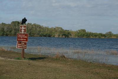 The Everglades National Park, Florida