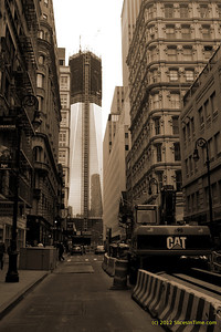 One World Trade Center from Financial District
