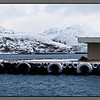 Winter Quay III<br /> Bodø harbour