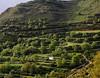 Hillside in mid-Crete, Amari valley