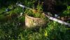 Irrigation system XI - Galatas