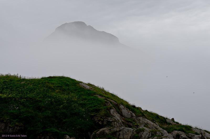 Sea fog - a well known companion on good summer days