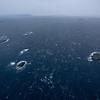 South-west gale<br /> Vestfjorden in february