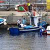 Harbour activities<br /> Puerto Mogan