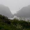 Sea fog - weiw from Vestervika
