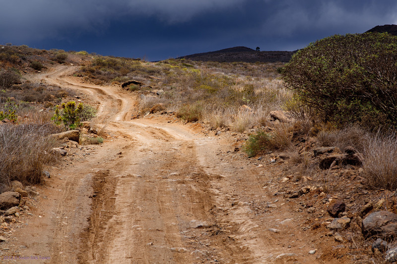 Road to the mountains<br /> Puerto Rico backlands