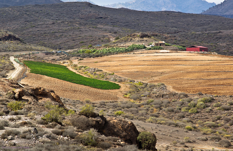Farm by the carp pond<br /> Puerto Rico backlands