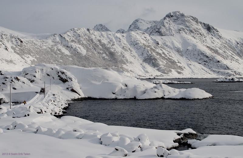 Snowy at Vestervika, Nyksund