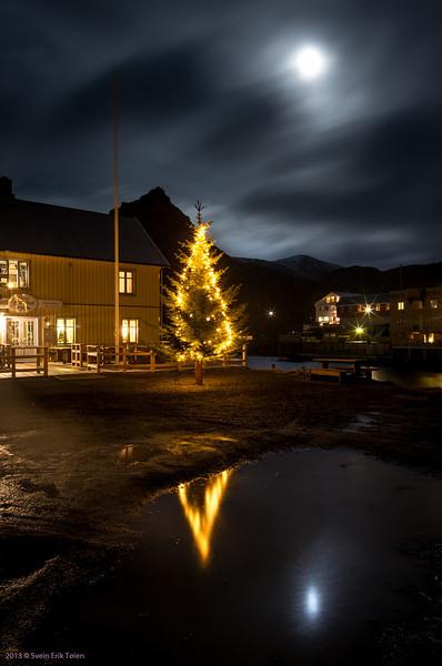 Christmas tree in Nyksund square III
