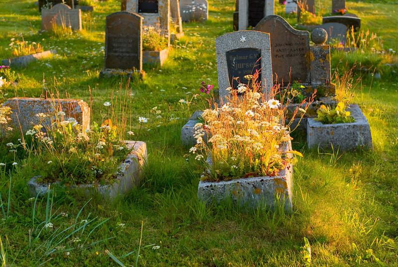 Blooming graves