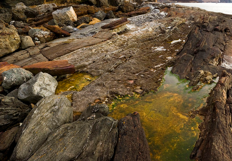 Seaside still life