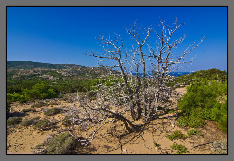 On the way to Agios Ioannis - a dry landscape