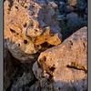 Mongrol rock - I